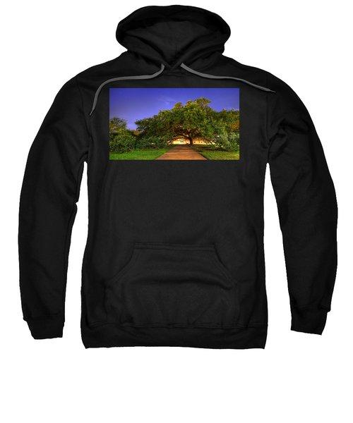 The Century Tree Sweatshirt