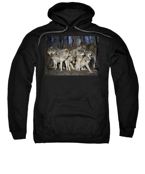 The Gang Sweatshirt