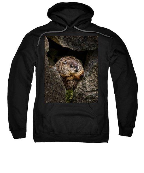 The Groundhog Sweatshirt