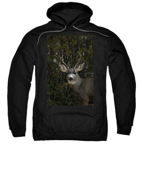 The Mulie Sweatshirt