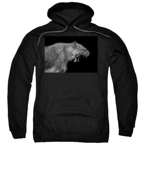 The Pain Within Sweatshirt