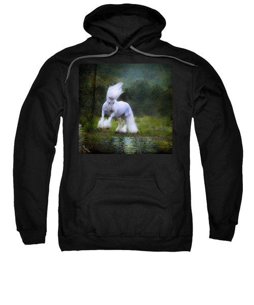 The Reflection Sweatshirt