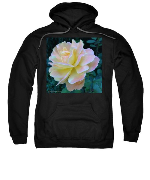 The Rose For A Rose Is A Rose Is A Rose Sweatshirt