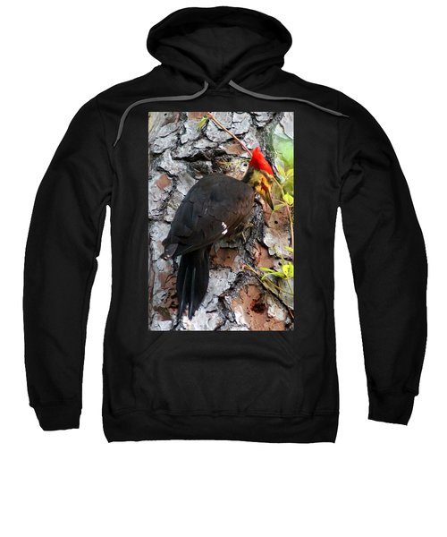 Sweatshirt featuring the photograph The Southeastern Pileated Woodpecker by Kim Pate