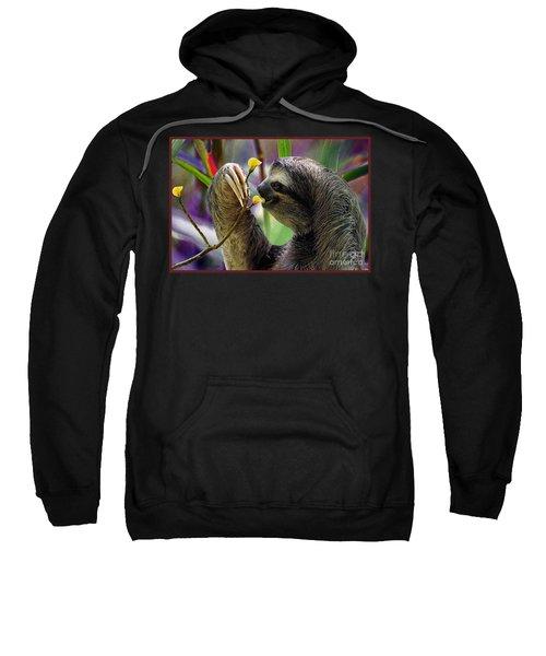 The Three-toed Sloth Sweatshirt