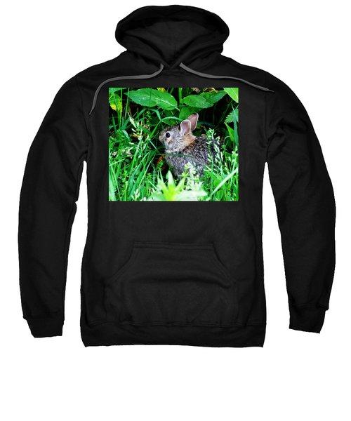 The World Is New Sweatshirt
