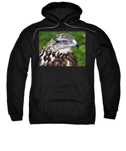 The Threat Of A Predator Hawk Sweatshirt