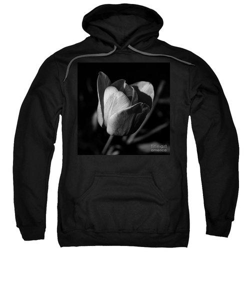 Threshold - Monochrome Sweatshirt