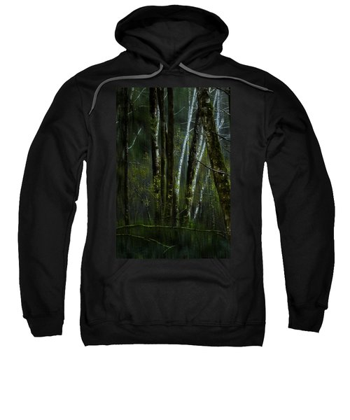 Through A Glass . . . Darkly Sweatshirt