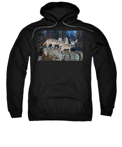 Timber Wolf Pack Sweatshirt