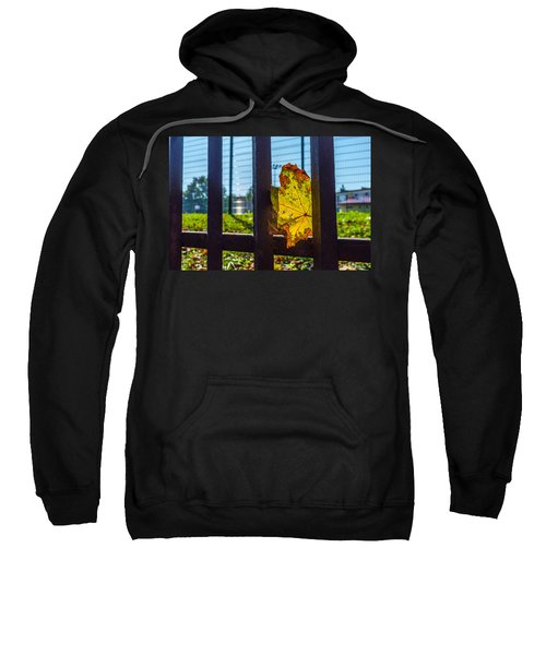 Trapped And Slowly Dying Sweatshirt