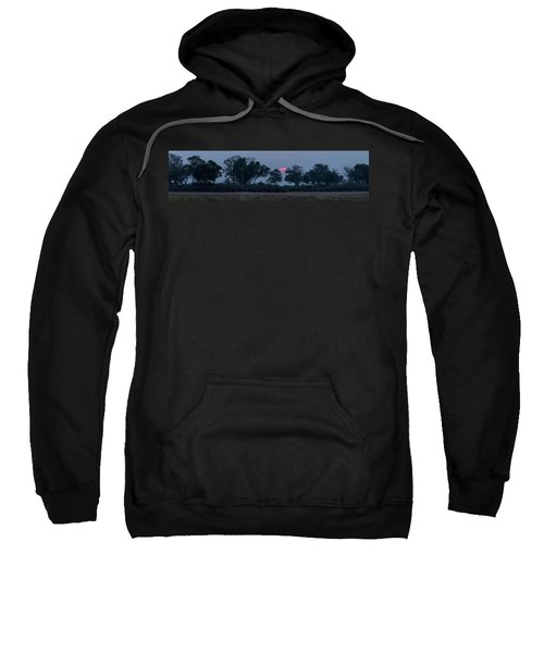 Trees In A Forest At Dusk, Kings Pool Sweatshirt