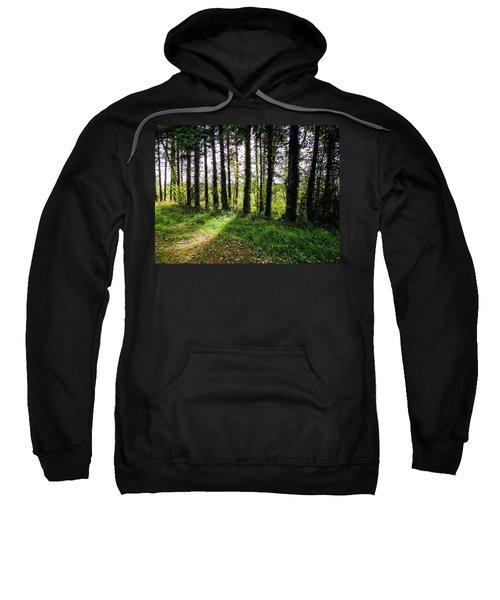 Trees On The Shannon Estuary Sweatshirt