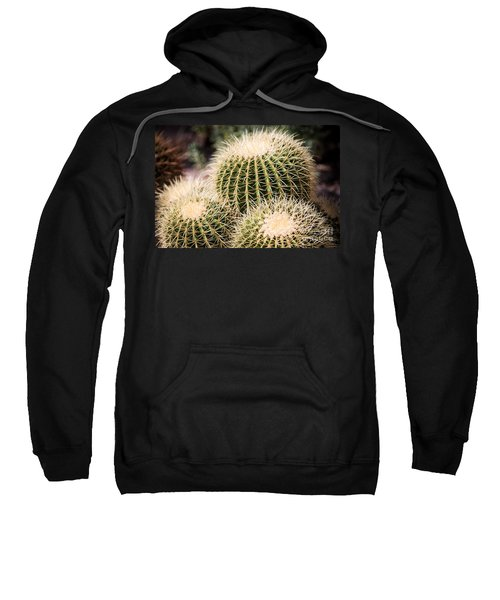 Triple Cactus Sweatshirt