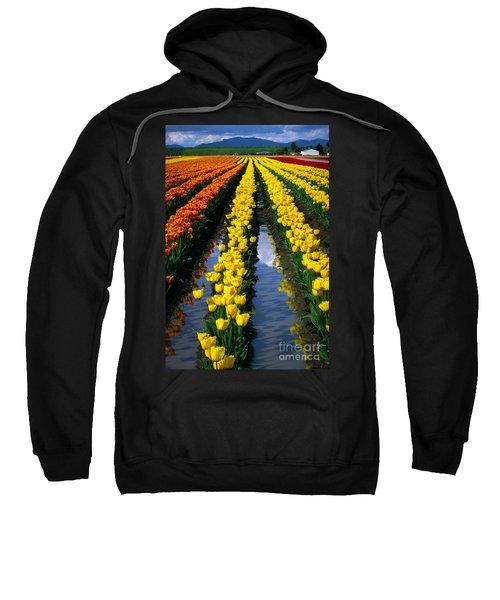 Tulip Reflections Sweatshirt