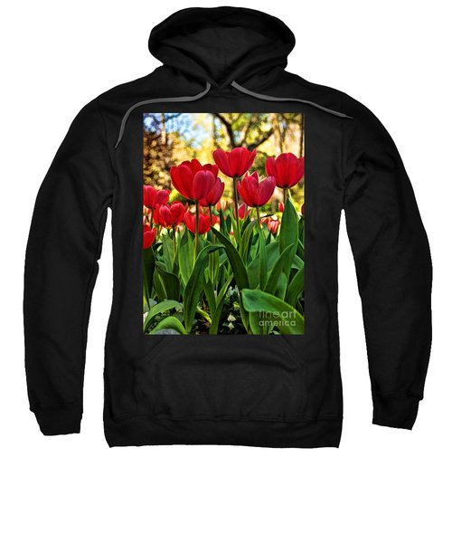 Tulip Time Sweatshirt by Peggy Hughes