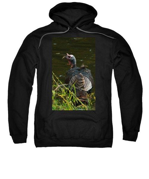 Turkey At Lake Sweatshirt