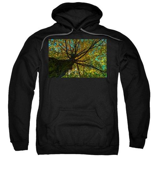 Under The Tree S Skirt Sweatshirt