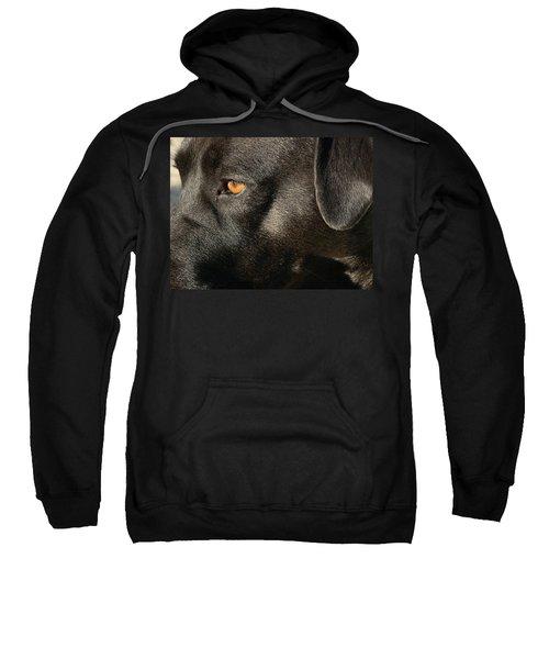 Up Close And Personal Sweatshirt