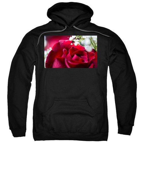 Valentine Sweatshirt by Alex Lapidus