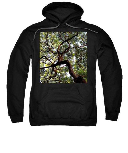 Veins Of Life Sweatshirt