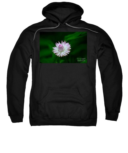Violet And White Flower Sepals And Bud Sweatshirt