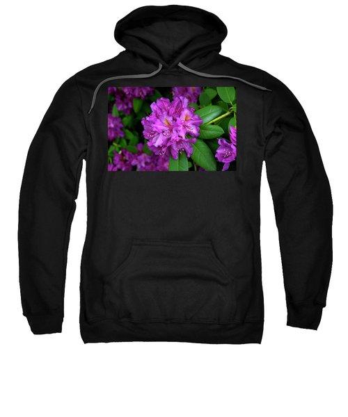 Washington Coastal Rhododendron Sweatshirt