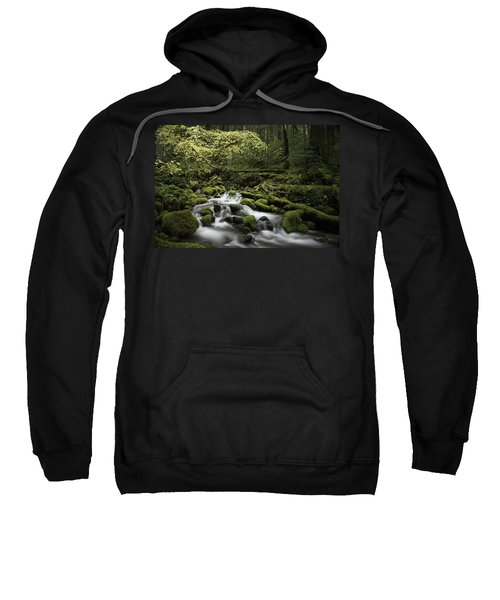 Waterfall In The Fall Sweatshirt