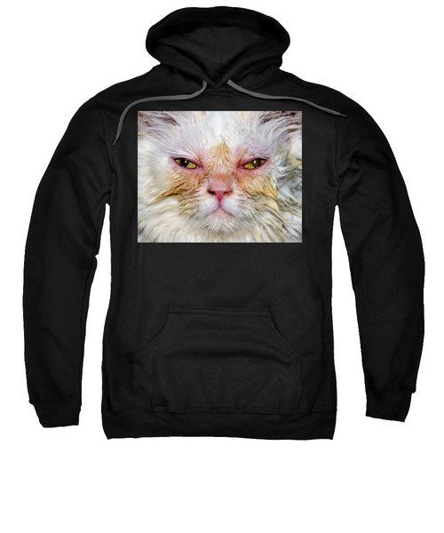 Scary White Cat Sweatshirt