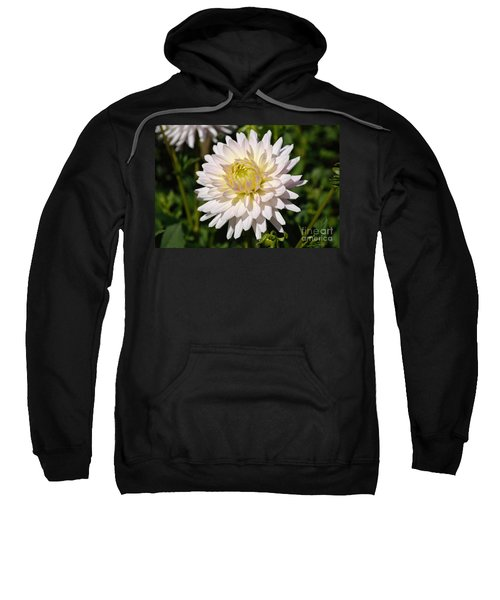 White Dahlia Flower Sweatshirt