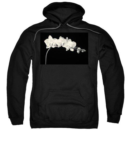White Orchids Monochrome Sweatshirt