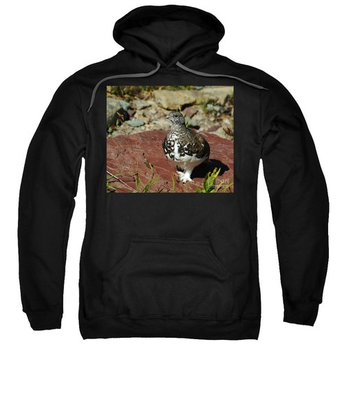 White-tailed Ptarmigan Sweatshirt