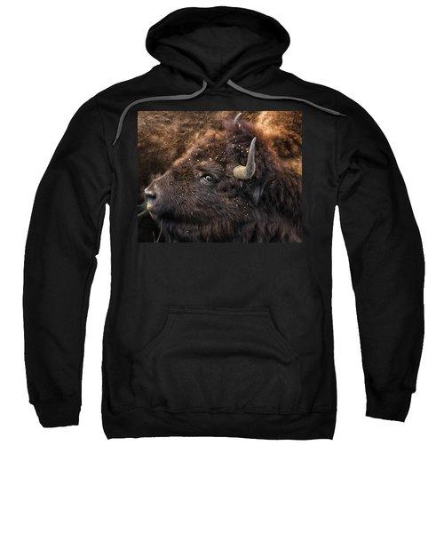 Wild Eye - Bison - Yellowstone Sweatshirt