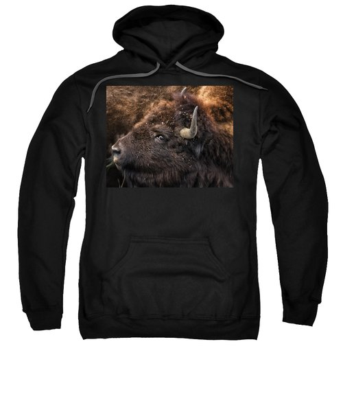 Wild Eye - Bison - Yellowstone Sweatshirt