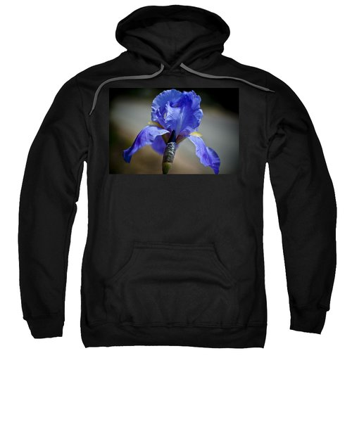 Wild Iris Sweatshirt