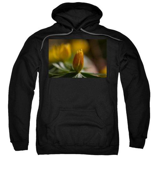 Winter Aconite Sweatshirt