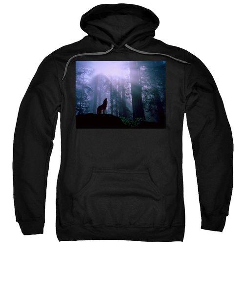 Wolf In The Woods Sweatshirt