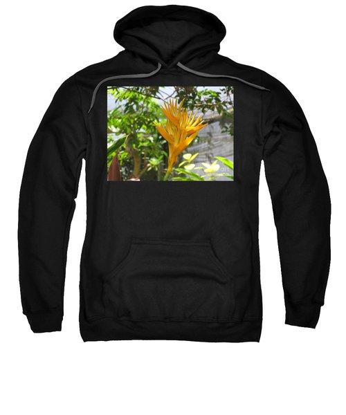 Yellow Bird Of Paradise Sweatshirt