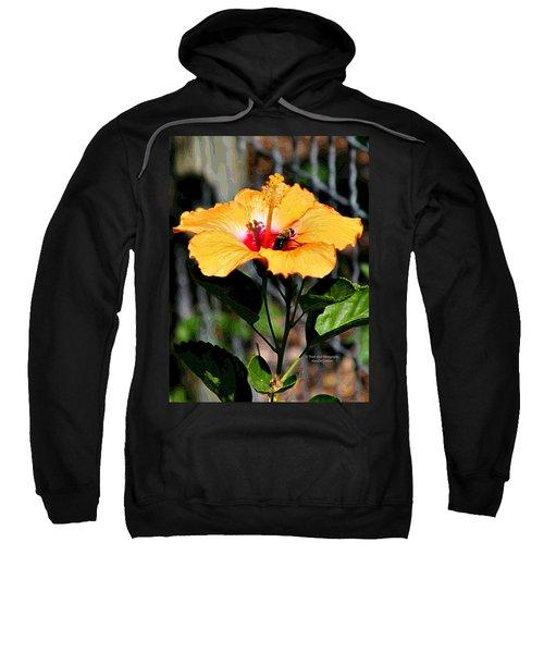 Yellow Bumble Bee Flower Sweatshirt