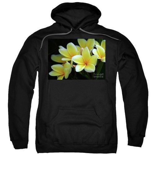 Yellow Plumeria Cascade Sweatshirt