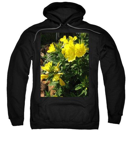 Yellow Primroses Sweatshirt