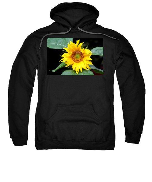 Yellow Sunflower Sweatshirt