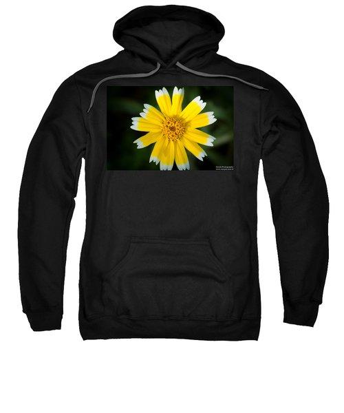 Yellow Sunshine  Sweatshirt