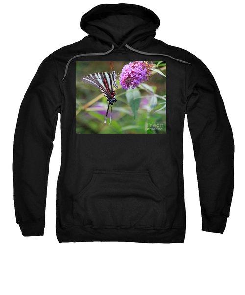 Zebra Swallowtail Butterfly On Butterfly Bush  Sweatshirt