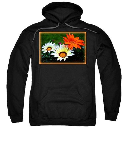 Garden Daisies Sweatshirt