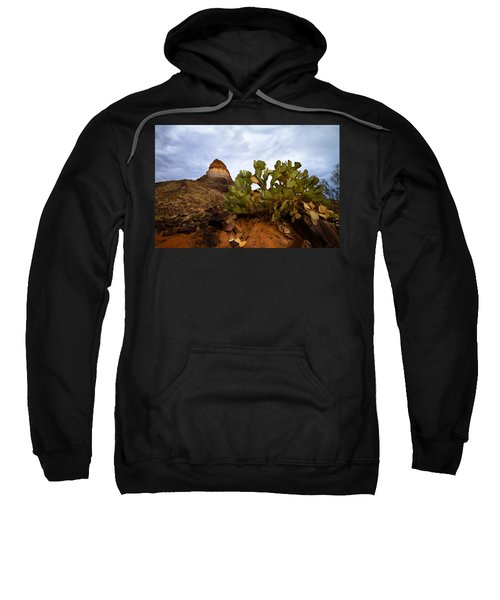 Prickly Pear Sweatshirt
