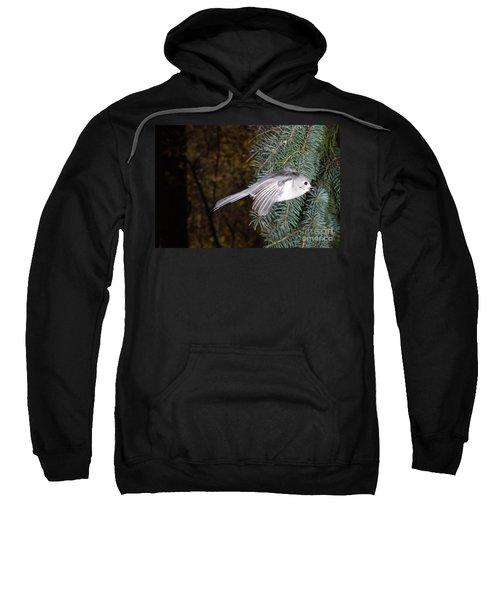 Tufted Titmouse In Flight Sweatshirt by Ted Kinsman