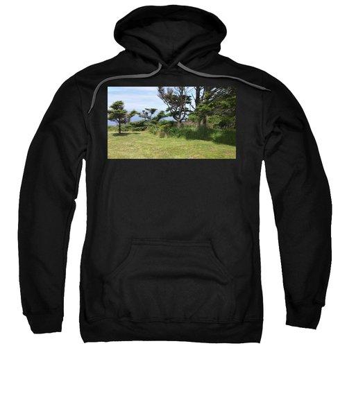 Afternoon Magic Sweatshirt