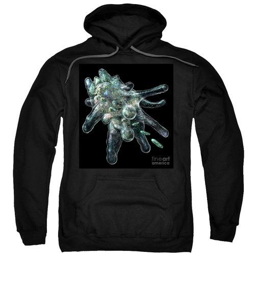 Amoeba Black Sweatshirt