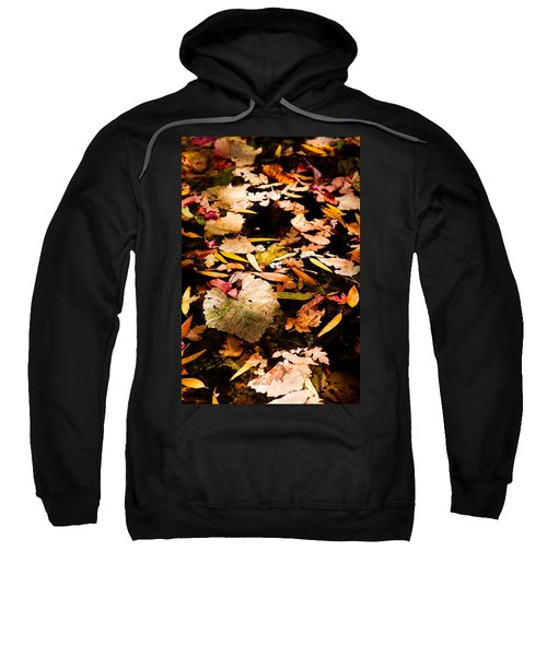 Autumn In Texas Sweatshirt